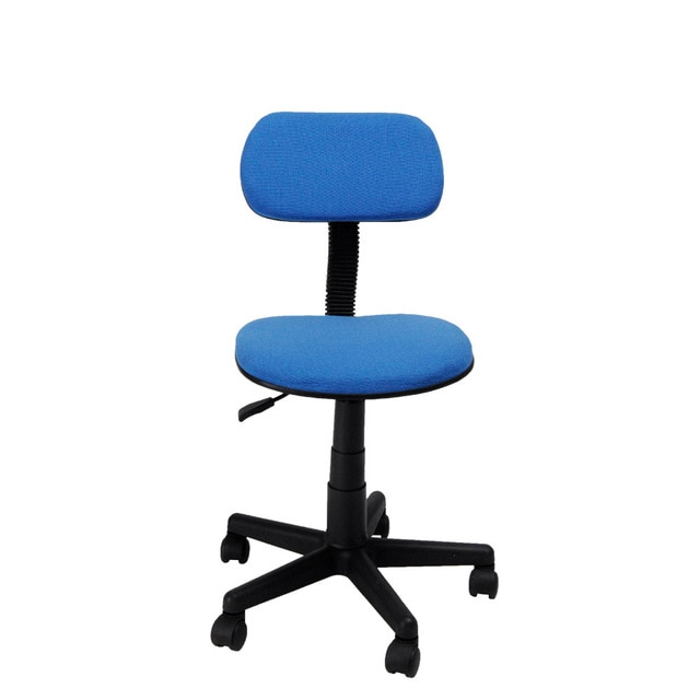 Aingoo Ergonomically Office /Task/Computer Chair with Fabric Pads
