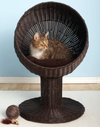 21 Cool Furniture For Pets | my dream house | Cats, Pets, Cat furniture