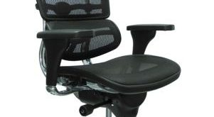 Ergohuman Mesh High Back Ergonomic Chair w/Headrest | OfficeChairs.com