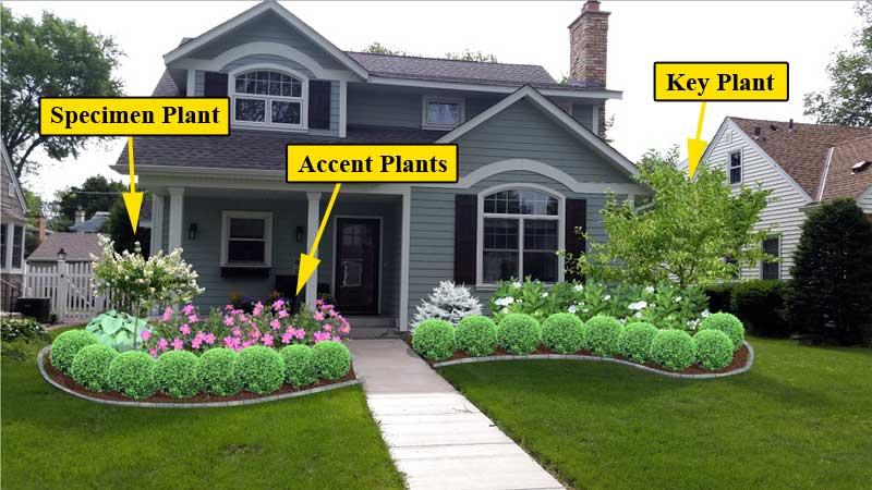 Front Yard Landscaping - LawnEQ Blog