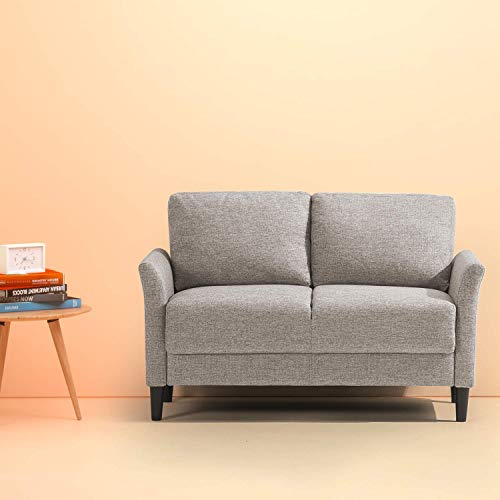 Loveseat Futon: Amazon.com