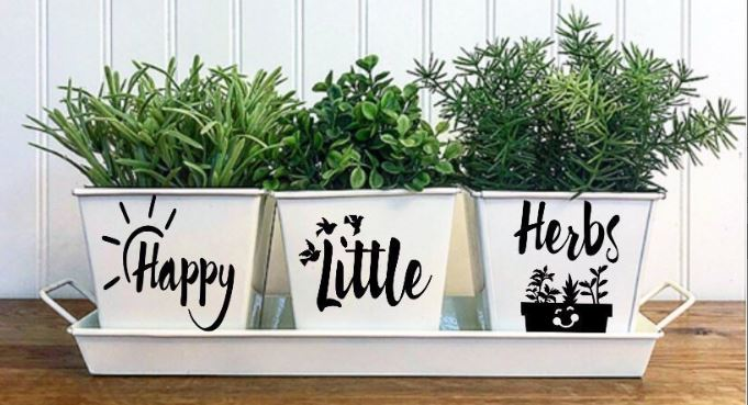 Indoor Herb Garden to Beautify Your Home