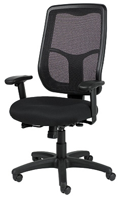 Eurotech Apollo MTHB94 Mesh Back Office Chair by Raynor on sale