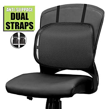Amazon.com: Easy Posture Lumbar Back Support Mesh (Black Mesh, 1PC