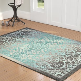 Aqua Area Rug | Wayfair