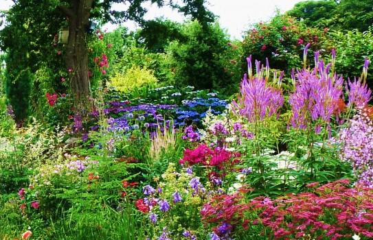 ... stylish cottage garden cottage garden ideas uk ... QEFRIAD