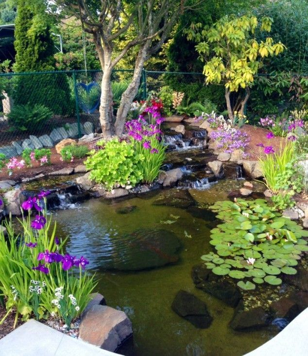 18 lovely ponds and water gardens for your backyard JUYBPTD