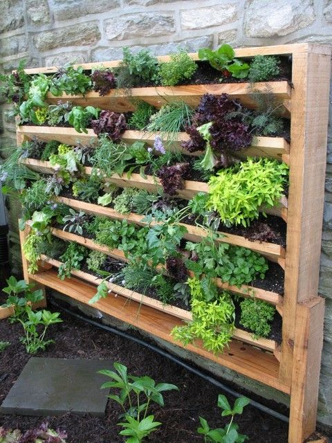 20 excellent diy examples how to make lovely vertical garden VGRGQYX