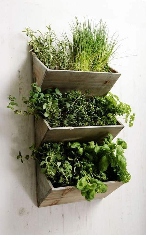 21 decorative indoor herb garden ideas while remodelling your kitchen -  http://centophobe JLCWBTC