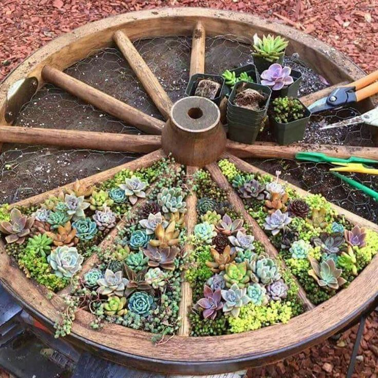 25+ best garden ideas on pinterest | gardening, gardens and backyard garden  ideas DPNYHUS