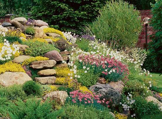 25+ best ideas about rock garden design on pinterest | back garden ideas,  backyard garden landscape XSPGHIE