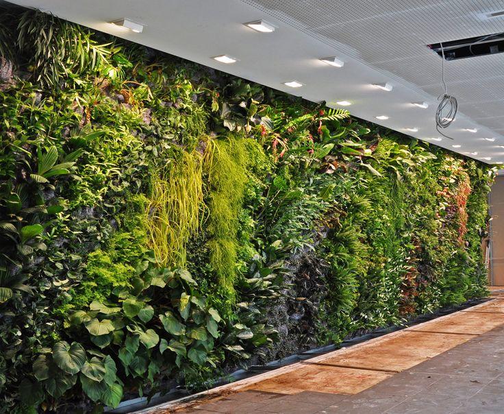 best 20+ vertical gardens ideas on pinterest   wall gardens, vertical garden  wall and vertical garden UNLSBML