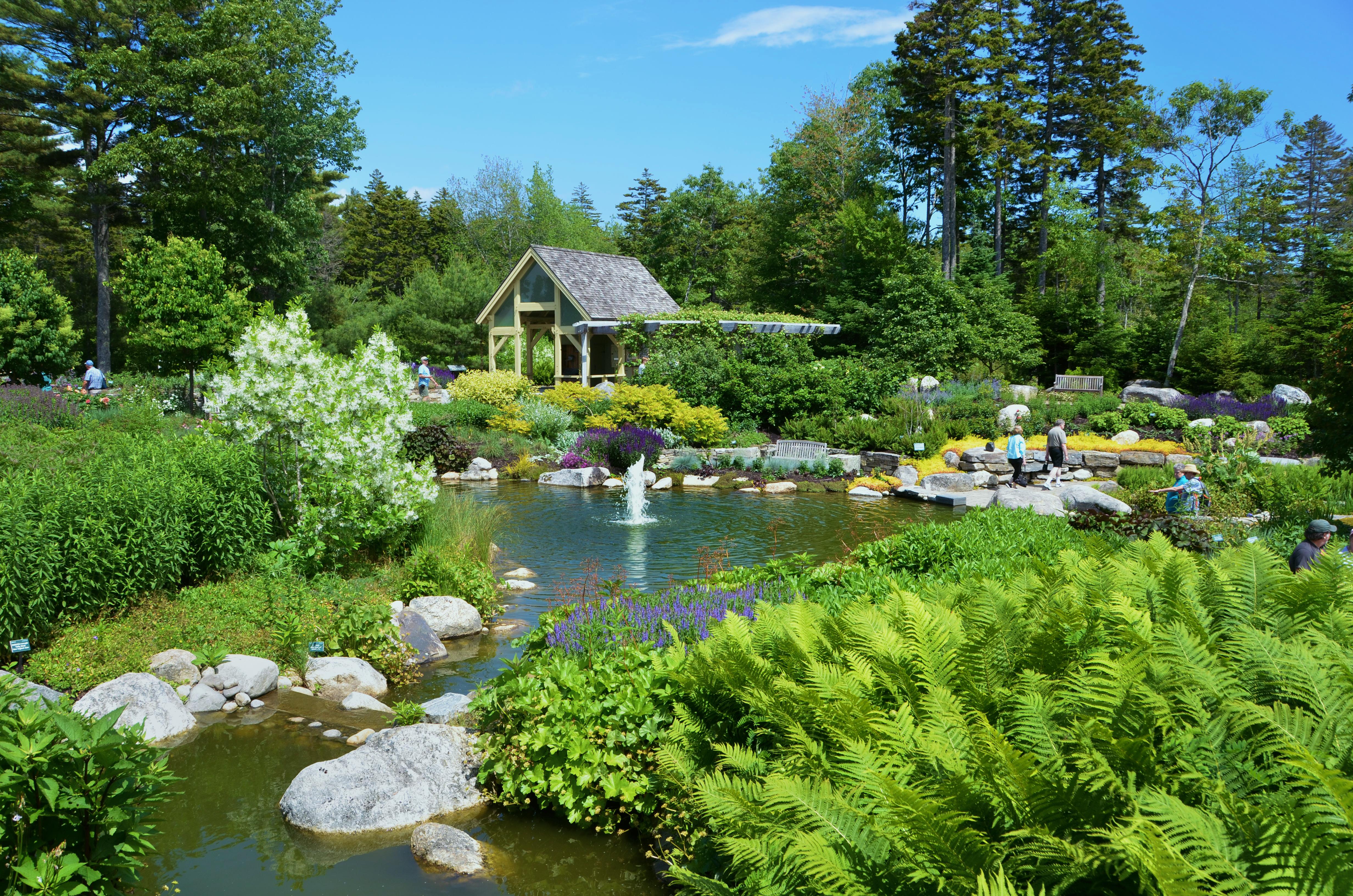 botanical gardens lush-lerner-garden-dsc_6435 IBSQCEK