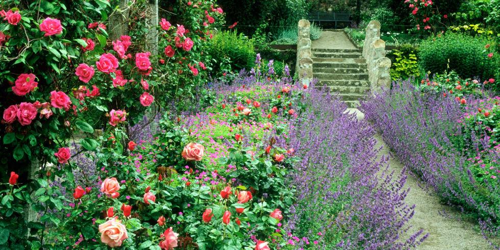 cottage garden 9 cottage style garden ideas - gardening ideas LKHLNNJ