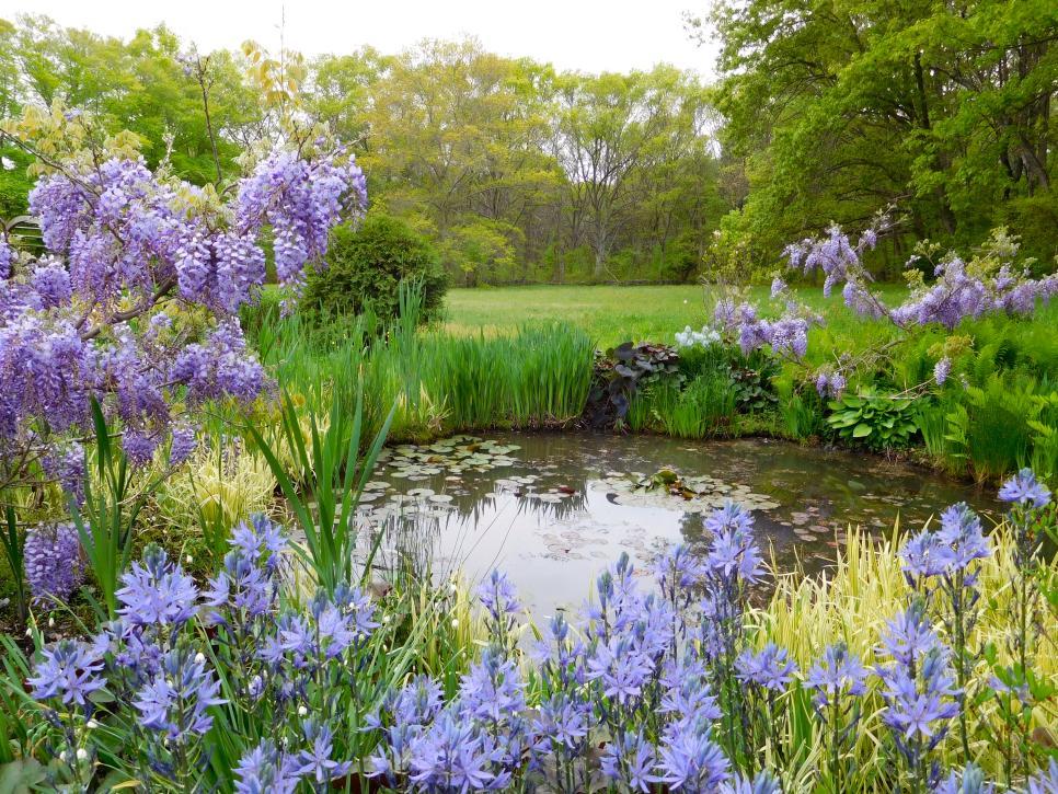 cottage garden designs we love | hgtv NPEMCGW