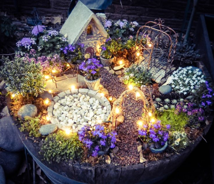 fairy garden with solar twinkle lights. plants include babyu0027s tears,  ageratum, allysum, ZSWFJDC