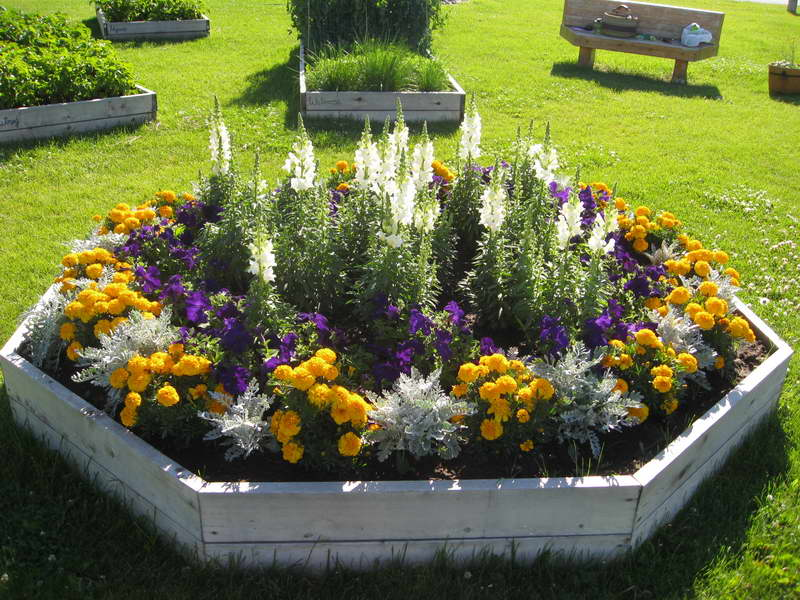 flower bed ideas annual flower bed designs with wooden board OMYHDDA