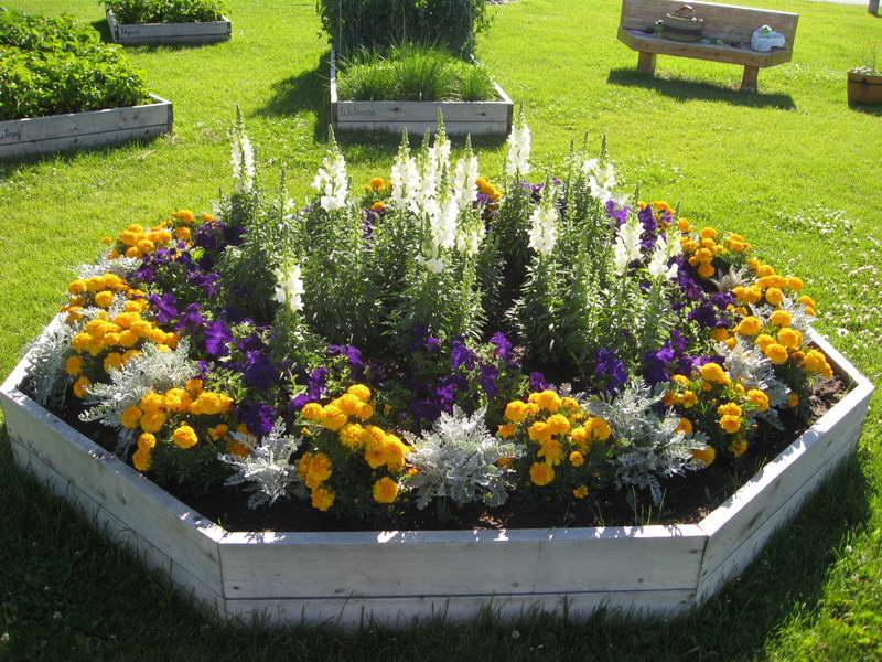 Beautiful Flower bed Ideas