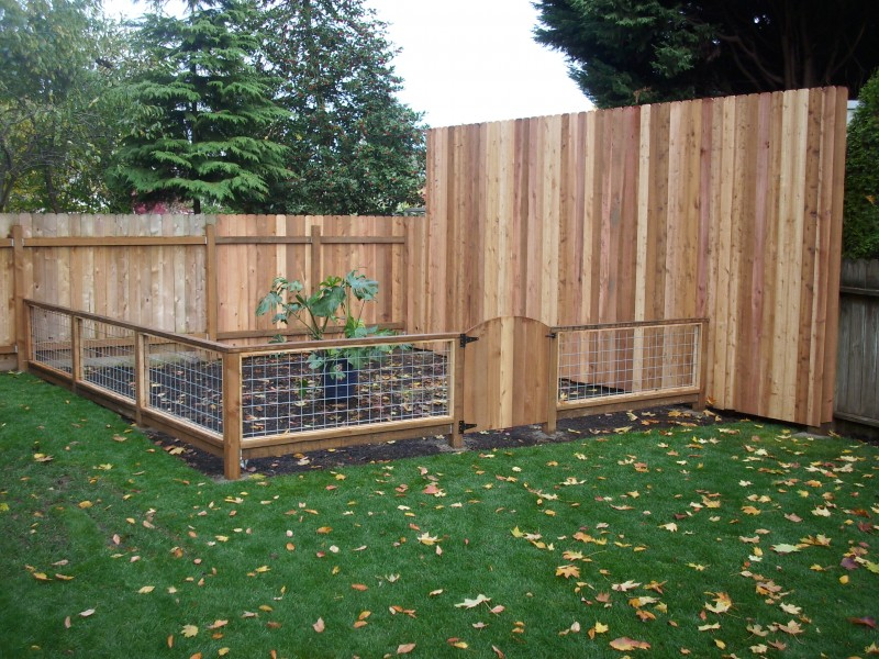 Garden fencing ideas