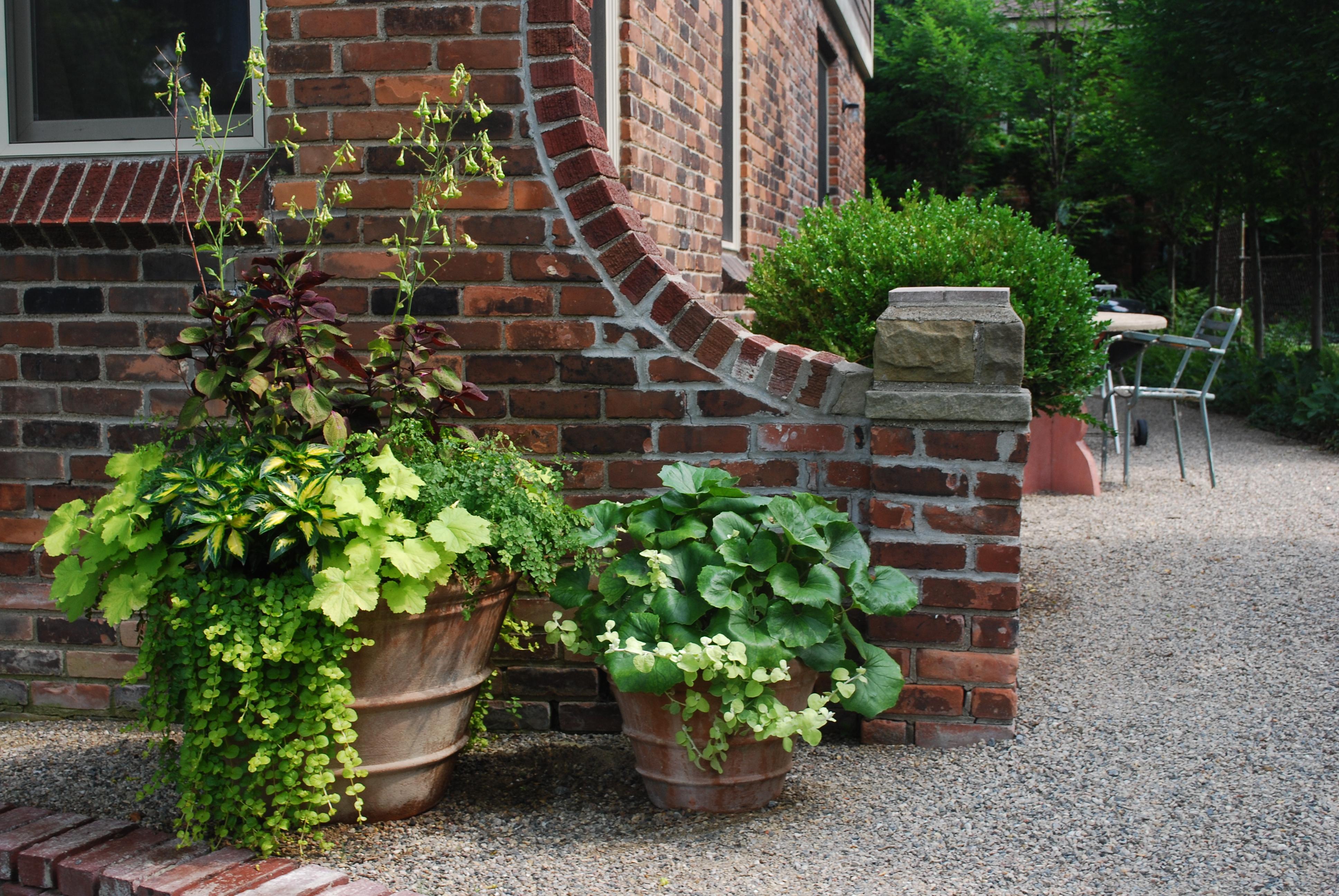 garden pots terra cotta pots ECNEVYU