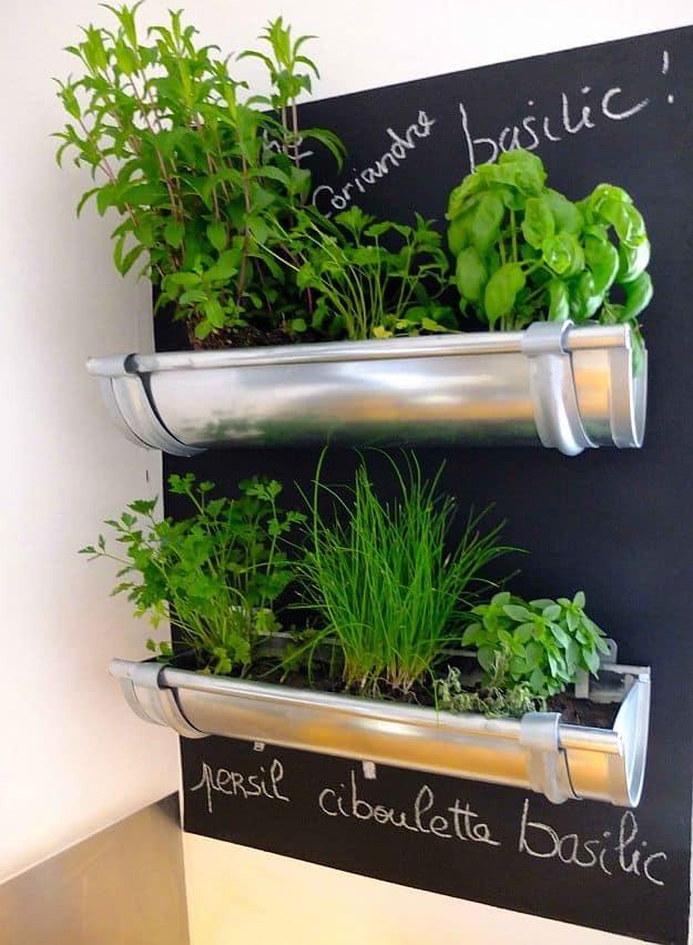 gutters herb garden | fun and easy indoor herb garden ideas ETGDJSF