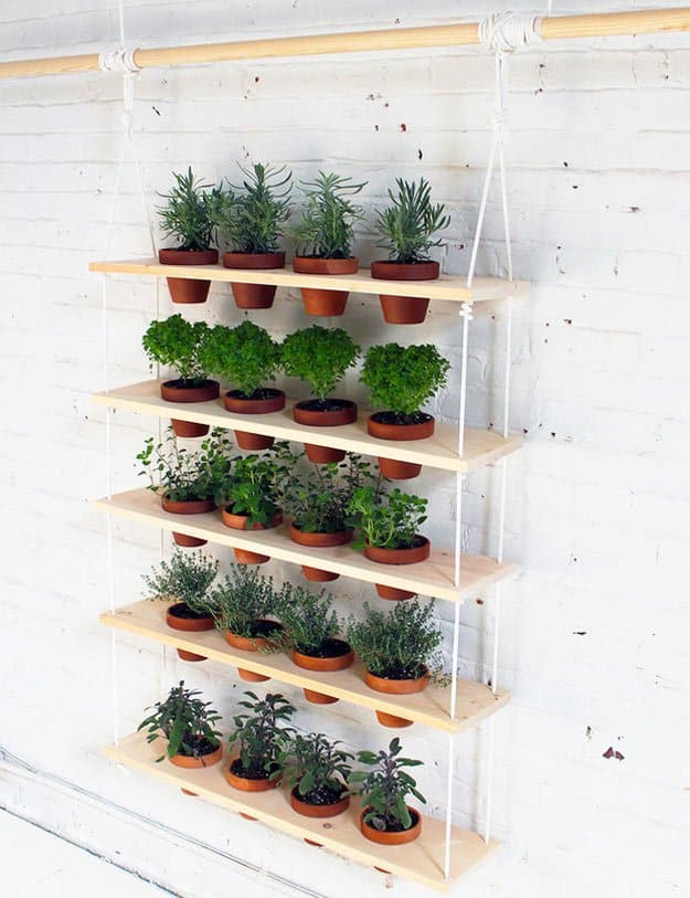 hanging herb garden | fun and easy indoor herb garden ideas MQEZXFN