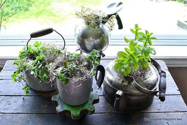 herb garden kettle style | fun and easy indoor herb garden ideas SMHHPLR