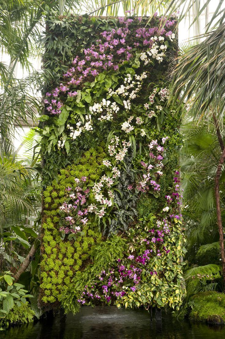 in the air: orchidelirium. vertical garden ... YONOJDH