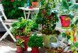 kitchen garden how-to-start-a-balcony-kitchen-garden MFYCAIR