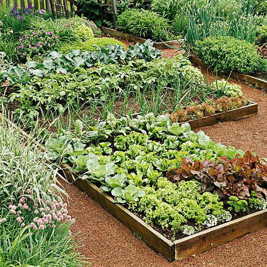 kitchen garden testing and fixing your soil EGPMAXD
