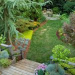 Professional Landscape Design Ideas