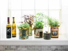 our 5 favorite indoor herb garden ideas BUVEFUW