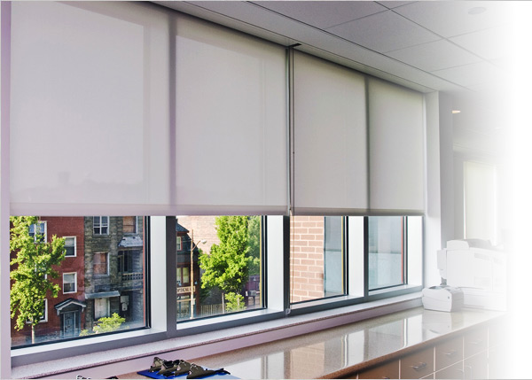 patrician window coverings CAWXRQL