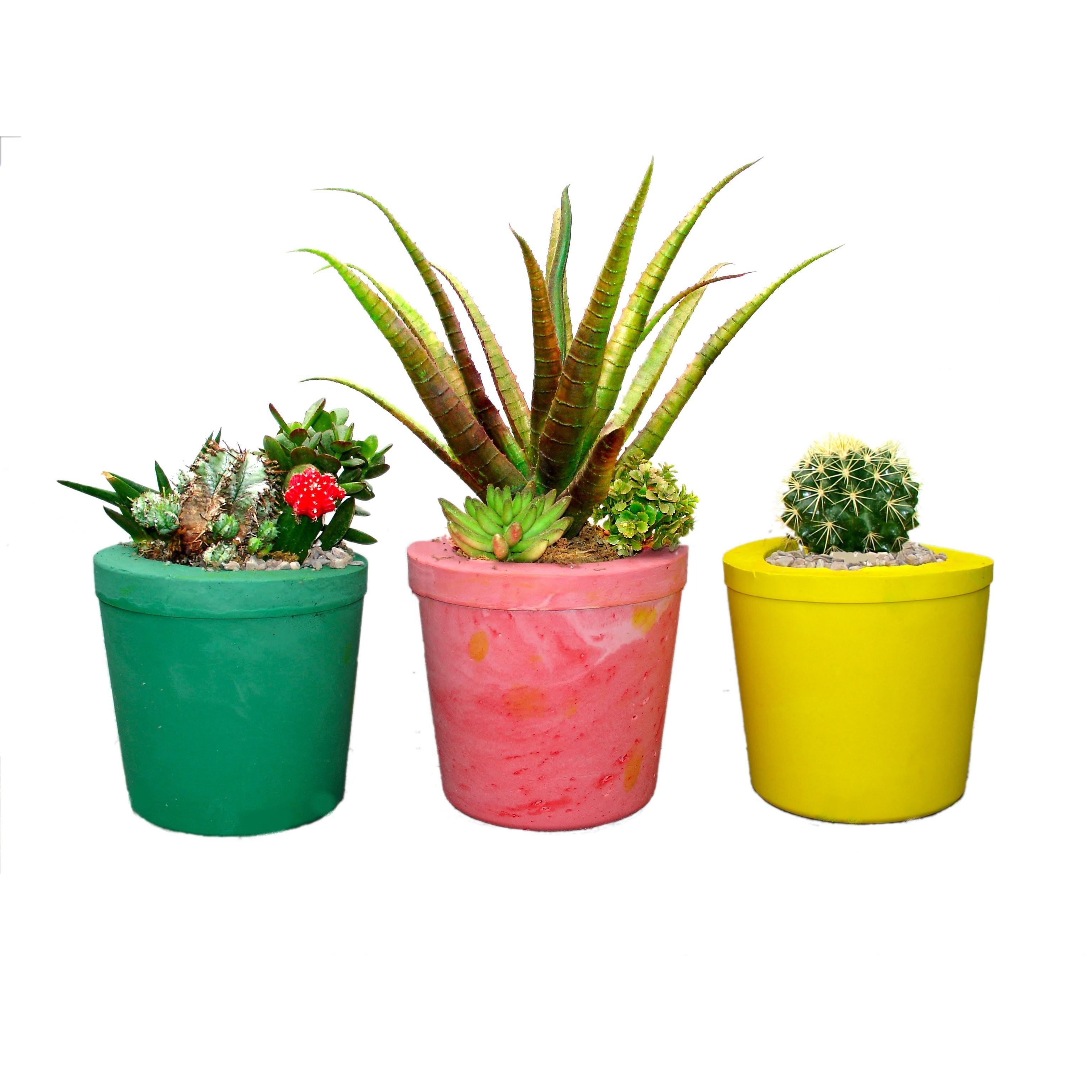 plant pots magic planting pot casting kit- make a plant a home CJKPLHG