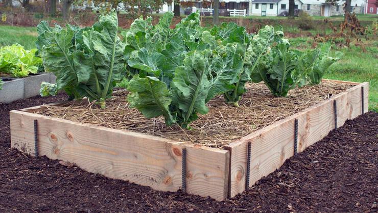 raised bed garden plank and rebar raised bed JKNWALH