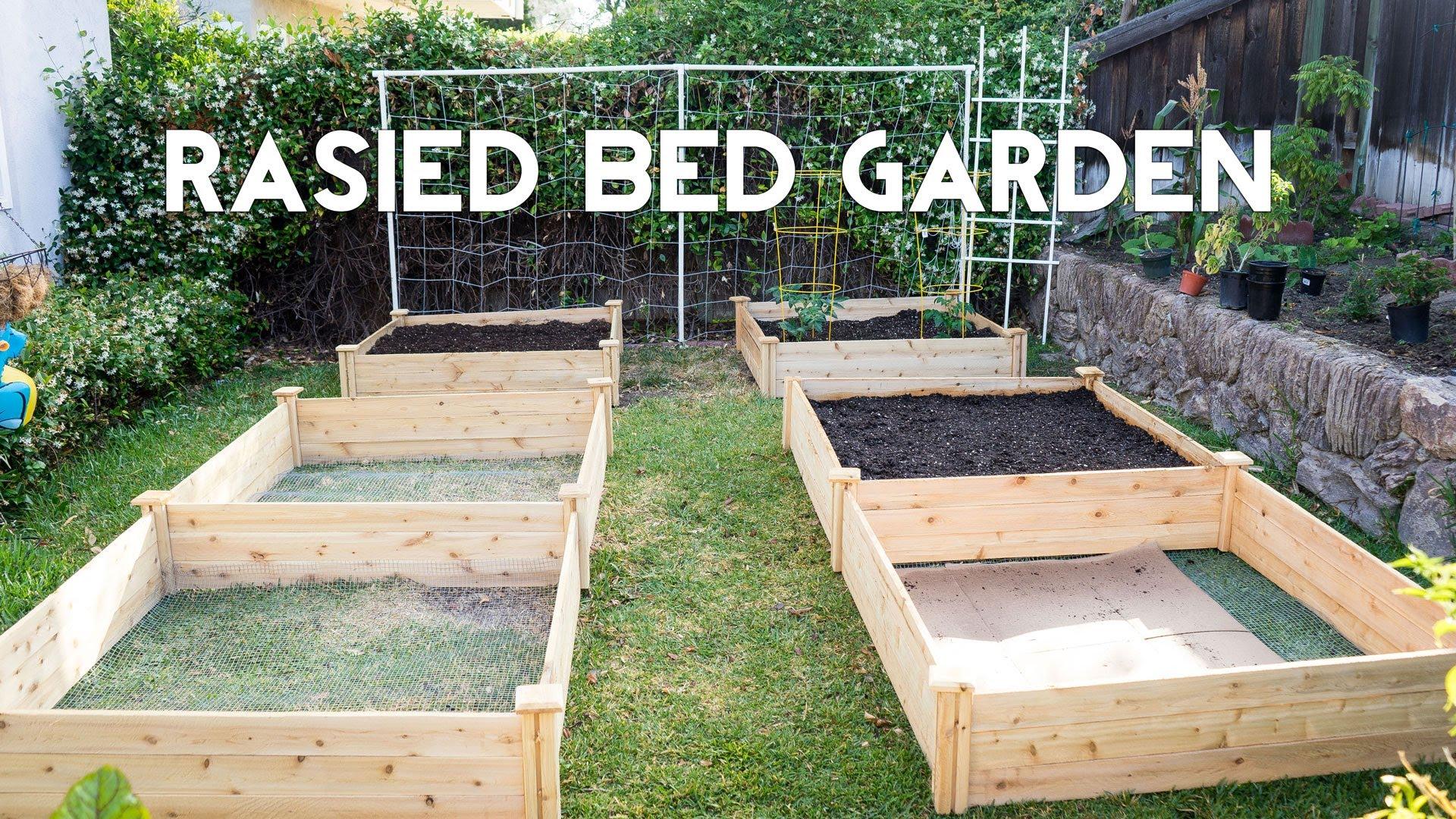 raised bed garden raised bed gardening - how to start a raised bed vegetable garden - youtube FXZBIWX