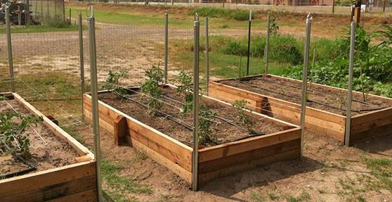 raised bed garden raised garden beds UQVDBMQ
