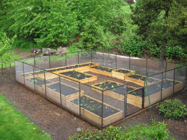 raised bed garden UKQJBIG