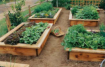 raised garden beds learn how to build a raised garden bed GYEKRTZ