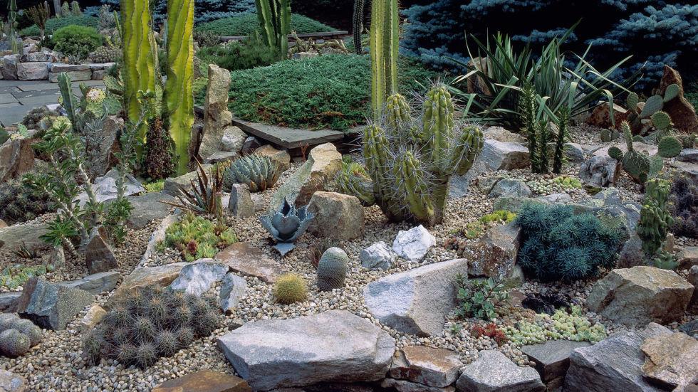 rock garden 3 map it out. IIWVKYV