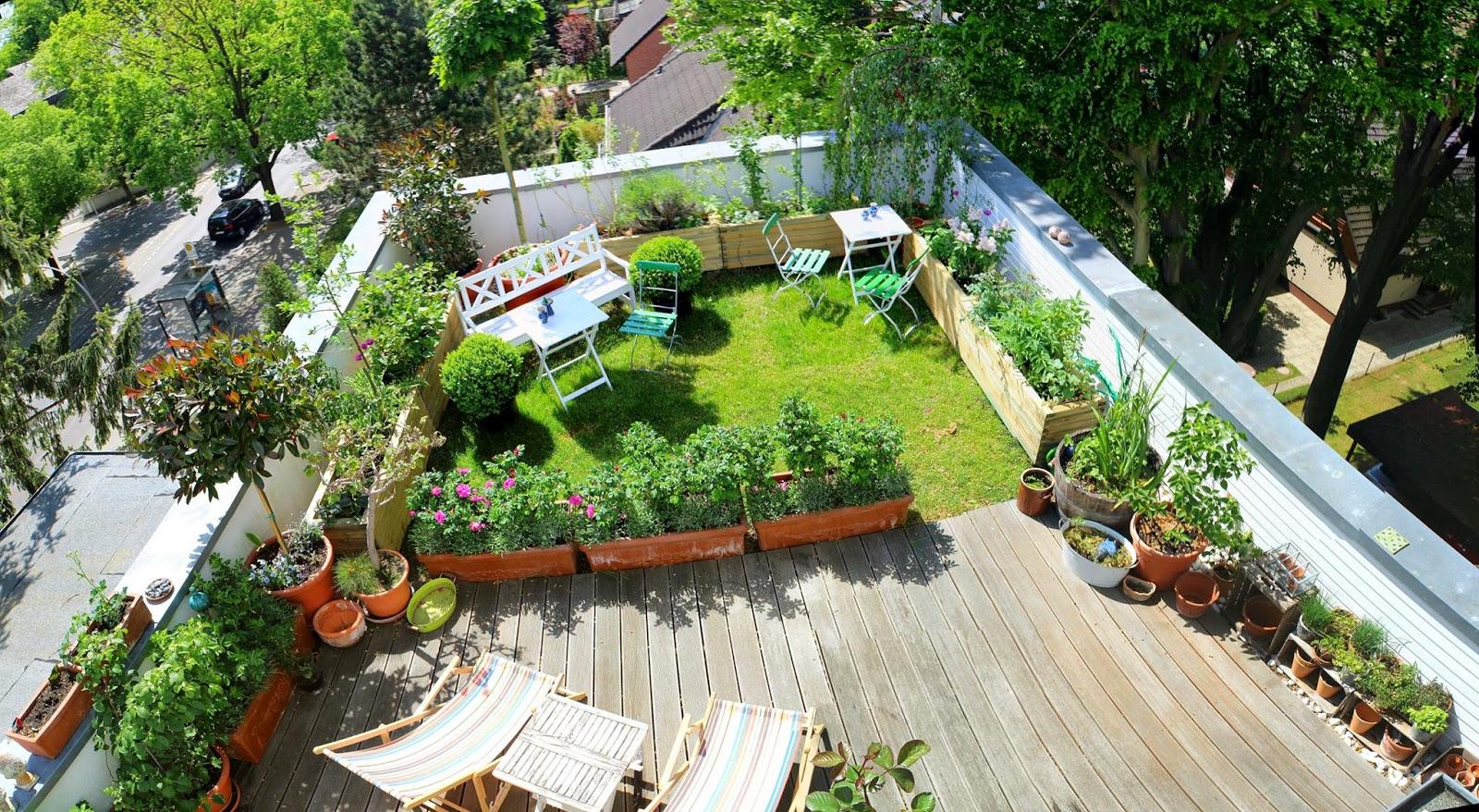 roof garden tobiasu0027s rooftop garden in berlin ZJNZZFH