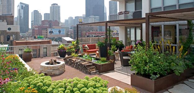 rooftop gardens: ancient idea - modern benefits - modern urban roof garden  - patio - VBCNBAL