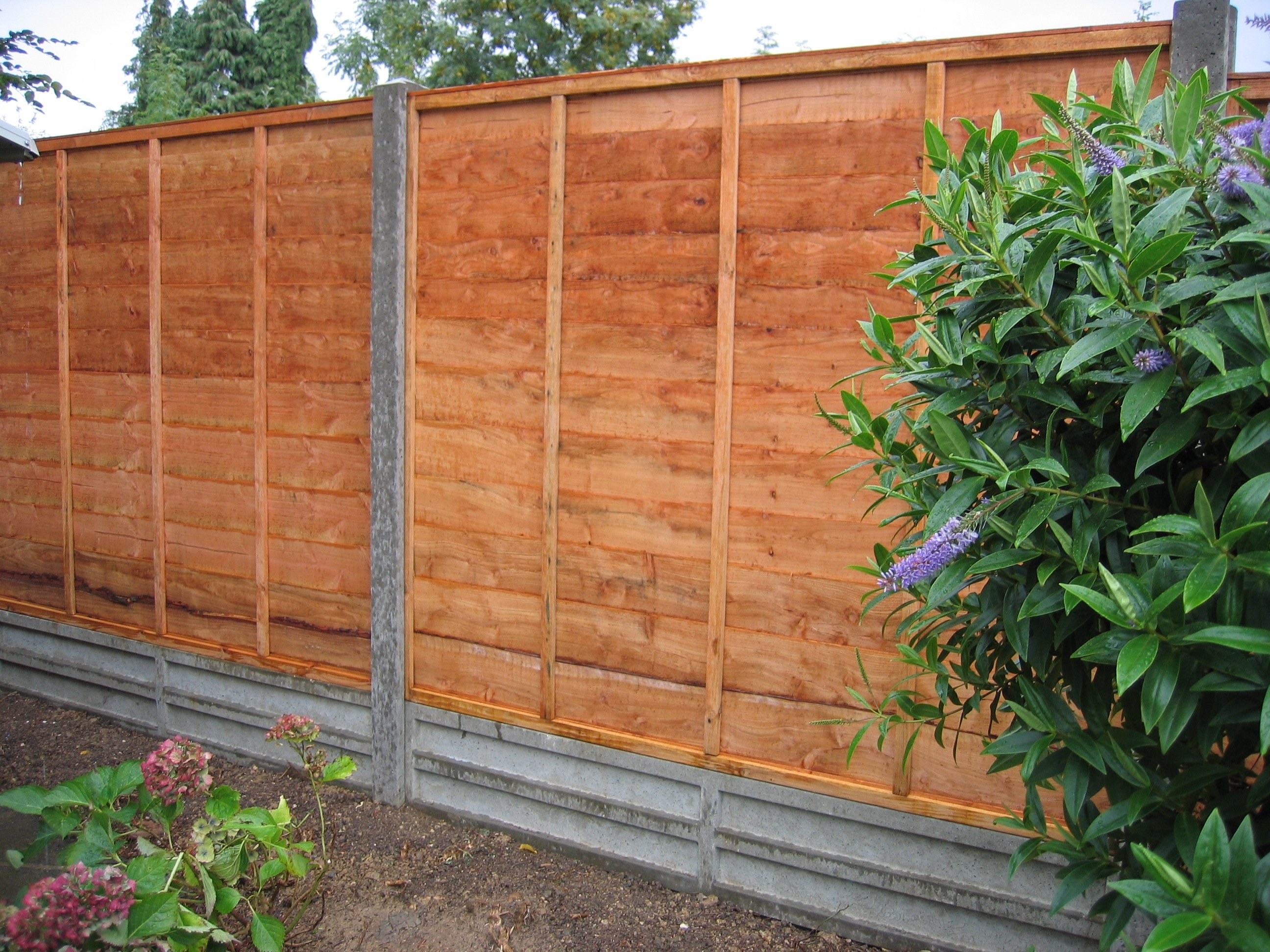 selecting garden fence panels - decorifusta WMZQIXP