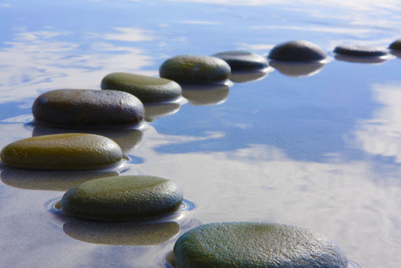 stepping stones the stepping stone friend DHTHSHB