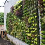 An overview of vertical garden