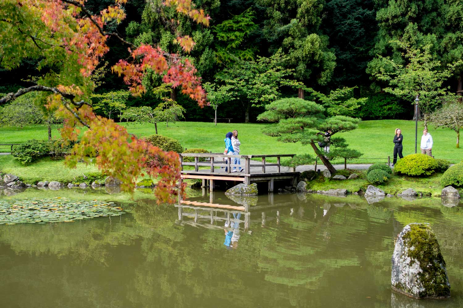 visitors near the water at the seattle japanese garden - photo by david  okrent BBABCAB