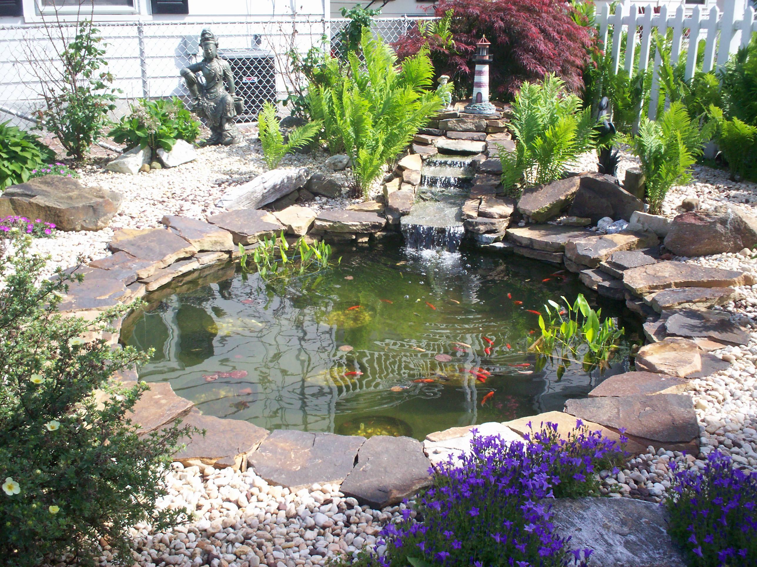 water gardens olympus digital camera pond after water garden 2 ... XXZACQL