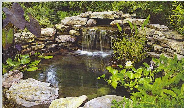 water gardens water gardening - itu0027s so fun! DRJLHBX