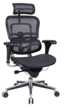 ergonomic office chair great value rating ergohuman high back swivel chair with headrest VAXEJTO