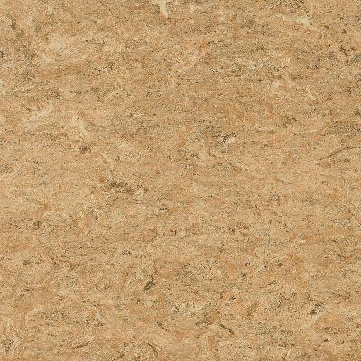 linoleum flooring marmorette - bamboo tan linoleum ls070 XGFRLPN